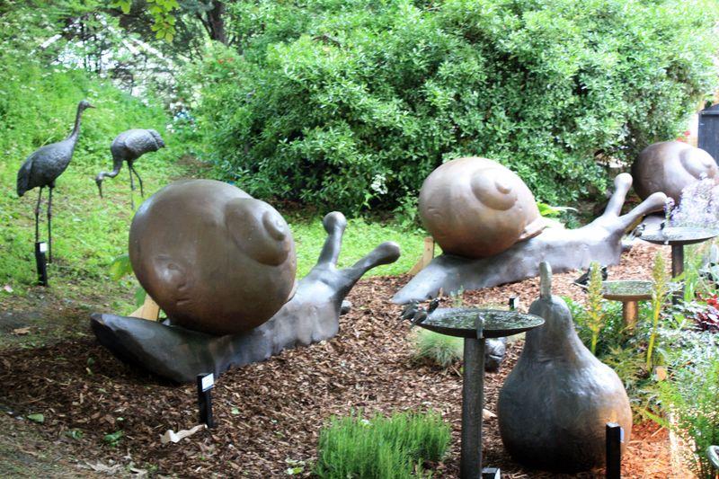 FCS_escargots_-oiseaux