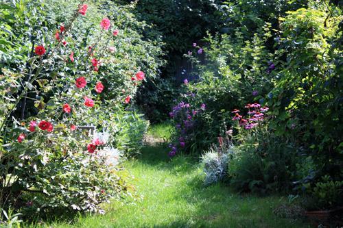 Jardin rouge_1292